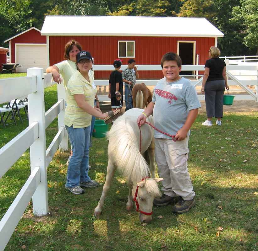 Youth Programs with Horses in Kalamazoo